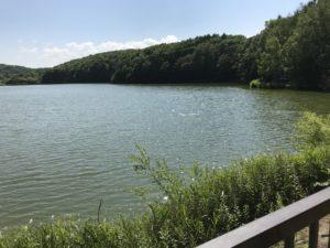 西岡水源地の画像 2020年