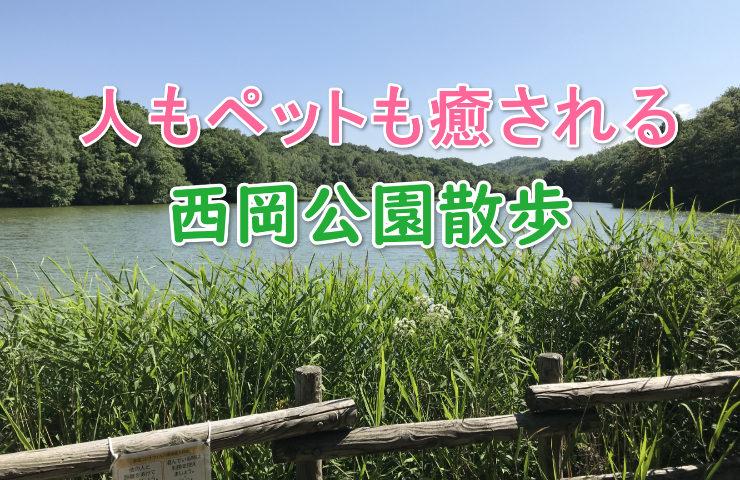 西岡公園の画像